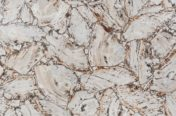 Petrified Wood White Leather